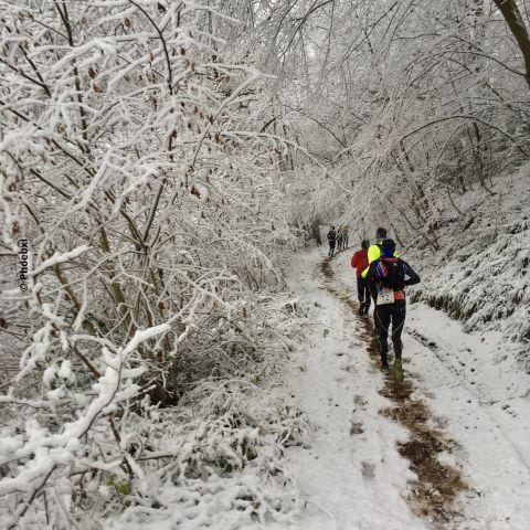 Trail de Marchin  2016