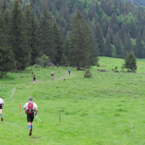 Transju'trail  2020