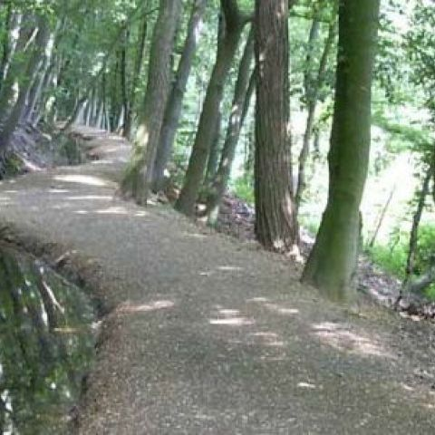 Devil's Trail Rijk van Nijmegen  2018