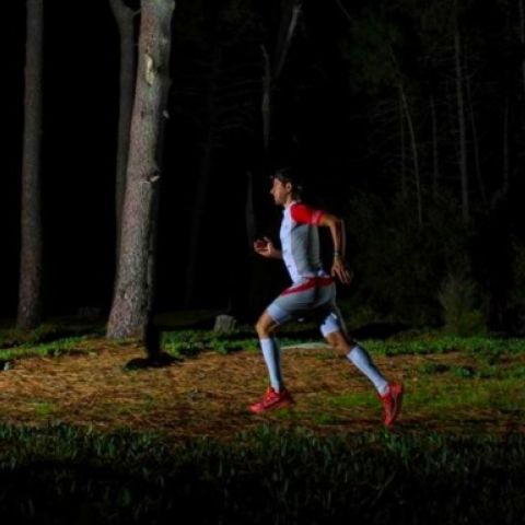 STC Night Trail  2016