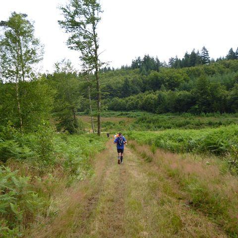 Trail de la croix scaille  2015