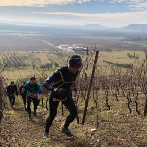 Trail des Côtes de Meuse  2019