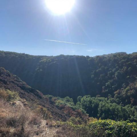 Trail du Ségala  2019