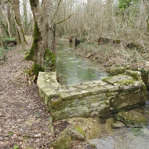 TLSA - Trail La Saint Amantoise  2020