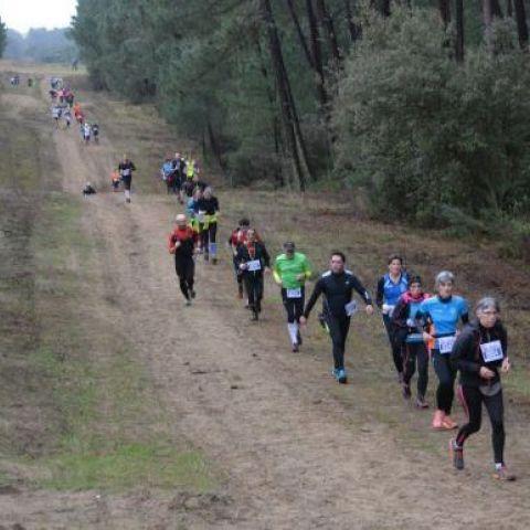 Trail de la Côte Sauvage  2020