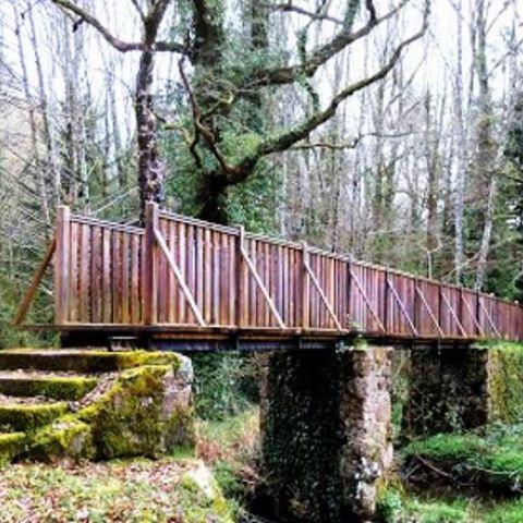 Trail Via Agrippa  2021