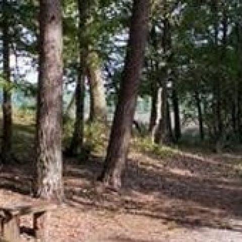 Woldberg Trail  2016