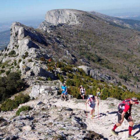 Trail Sainte Victoire  2018