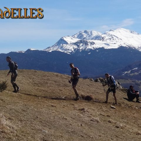 Trail des Citadelles  2020