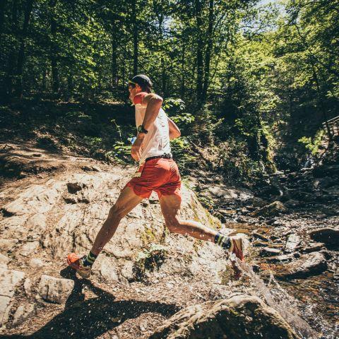 Ohm Trail  2017