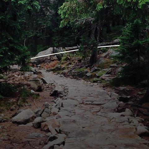 Trail de la Roche Marquée  2020