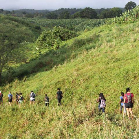 TNBT - Les Traces du Nord Basse-Terre  2019